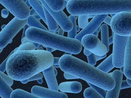 Pathogen Detection
